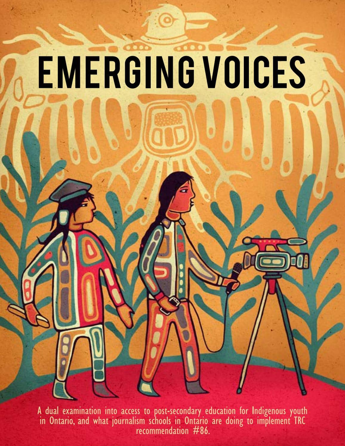 emerging voices cover